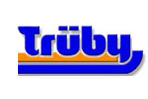 Logo Trüby - Hügel Bodendesign - Rheinfelden